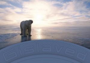 gis_bear